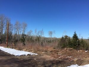 27.5 acres of land In Wentworth for sale (Beautiful Area)