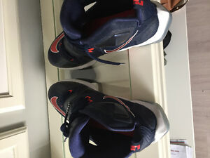 Lebron James Nike shoes size 12 almost brand new