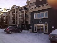 Beautiful 2 Bedroom 1 Bathroom Condo at the Ravines in Clareview