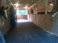 Horse boarding~ 2 stalls available