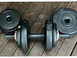 Home gym weights + one dumbell Wishart Brisbane South East Preview