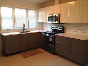 Lavish, Fully Upgraded, 3 Bed, 1.5 Baths, Modern and Spacious