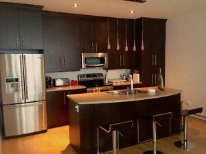2 floor modern 4 ½ condo July 1 - $1300/month