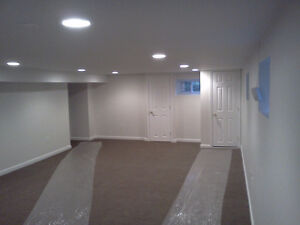 Basement Renos & Developments - Call The Pros You Can Trust