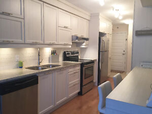 3 1/2 One Bedroom Appliances included Plateau Mont-Royal
