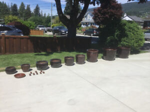 Collection of Ceramic Planters
