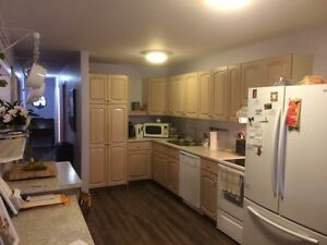 4 bedroom, 2 bath -NEWLY RENOVATING- good area- west of downtown