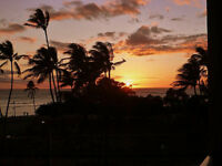 Gorgeous 1bdr Condo Heart of Kihei Maui