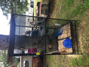 Large cage for rats or ferrets.