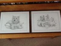2 lovely framed Westie prints by C Varley