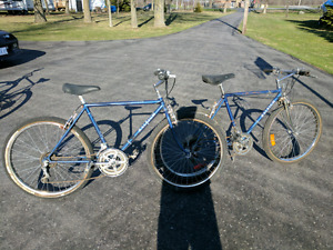 2 Raleigh Safaris