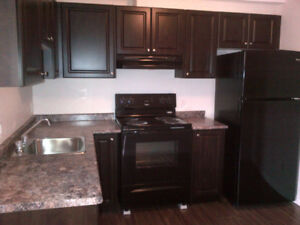 Two bedroom & 1 washroom apartment in Bowmanville