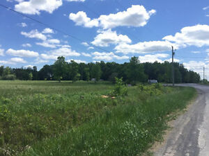 A corner lot just shy of an acre in Osnabruck Center Cornwall Ontario image 1
