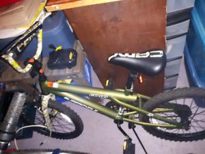 Youth Bike $65 obo