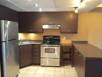 Updated and affordable 1 bed 1 bath condo in Guelph!
