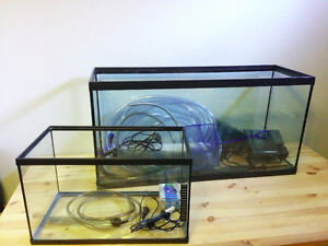 30gal & 10gal Aquariums in Excellent Condition with Accessories