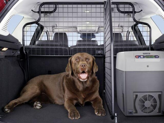Genuine Ford Focus Estate (10/2014>) Dog Guard - Upper, Half Height (1723909)
