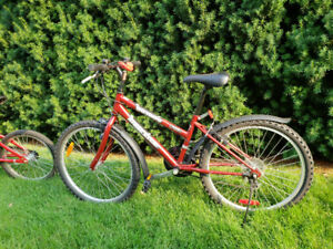 Red SuperCycle 5-Speed Girl's Bicycle