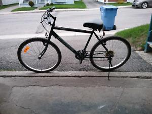 Bicyclette pour hommes ou femmes