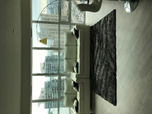 Looking for Roommate in Downtown Toronto