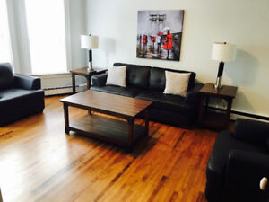 SUMMER RENTAL MAY-SEPT FULLY FURNISHED SUITES DOWNTOWN CH'TOWN