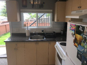 Gorgeous One-Bedroom Suite with Mountain View - Hastings-Sunrise