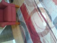 Area Rug in Excellent Condition for Sale