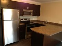 FULLY RENOVATED - AVAILABLE IMMEDIATELY