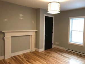Brand New South End 1 Bedroom