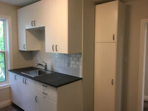 Deluxe downtown living: completely renovated 2 bedroom suite