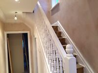 Painter and decorator at affordable price