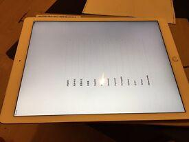 iPad Pro wifi cell 128gb silver