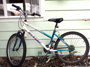 Quality Canadian Bikes. Moving Sale $98 & $180 OBO.