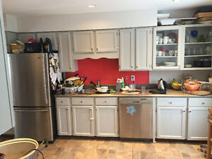 Kitchen Cabinets and Countertop - solid wood