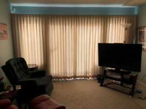 Drapes, Carpeting and base boards