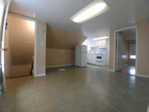 1 BDRM apartement upper unit of Duplex for rent in the central a