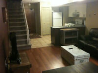 Spacious Fully Furnished Apartment Available Immediately