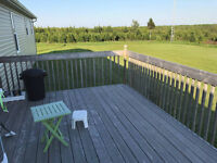 Wanted: Deck - Sand & Stain