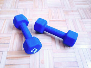 10 lbs DUMBBELLS - POIDS LIBRES