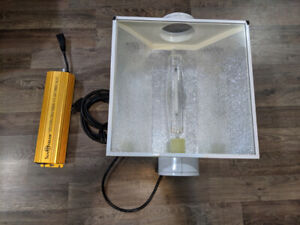 1000w ballast + air cooled hood with hortilux bulb about 6mo old