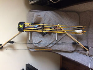 Wooden Compound Bow with Arrows