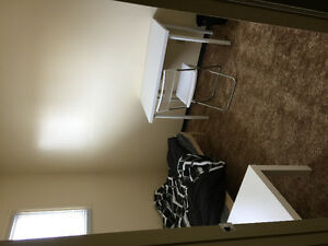 Room for rent in Callingwood area for $450 furnished for student