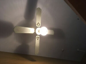 2 Ceiling fans with light