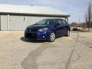 2014 Toyota Corolla Sport Sedan Kitchener / Waterloo Kitchener Area image 6