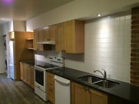 3 bedroom, newly renovated apartment in the Plateau Mont-Royal