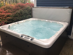 Beachcomber Hot Tub  580 - 8 person, for sale