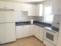 WOW! Detached House in The Price of Basement Apt (Whitby)