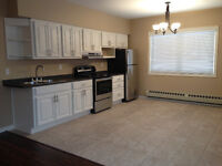 2-Bedroom Main Level. Ingersoll. Laundry Parking Renovated $875+