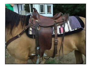 Lots of saddles for sale!