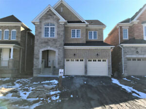 4 Bedroom 3.5 bathroom Full House In Bowmanville